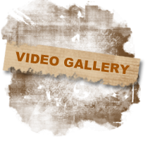 video_gallery